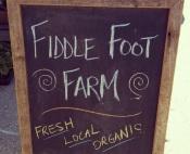 fiddlefoot1